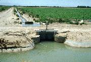 canal delivery of Colorado River water to melon field