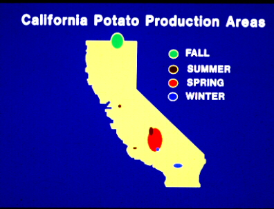 California Potato Production