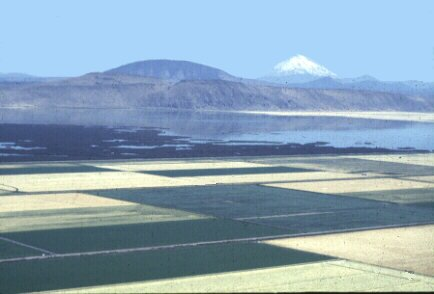 Tulelake area with Mt Shasta